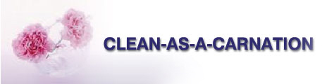 Carpet Cleaning Special Service Package