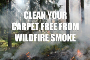 Clean Your Carpet Free from Wildfire Smoke